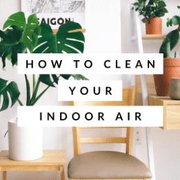 How To Clean Your Indoor Air